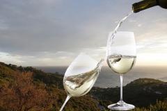 14_vino-ambientato