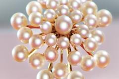 11_perle